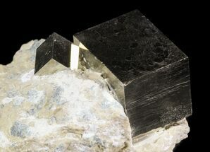 Buy Two Pyrite Cubes In Matrix - Navajun, Spain - #51235