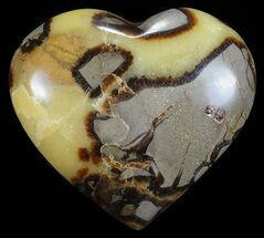 Septarian - Fossils For Sale - #54684