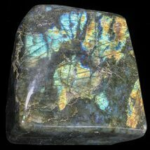 "Buy 4.4"" Flashy Polished Free Form Labradorite - #51529"