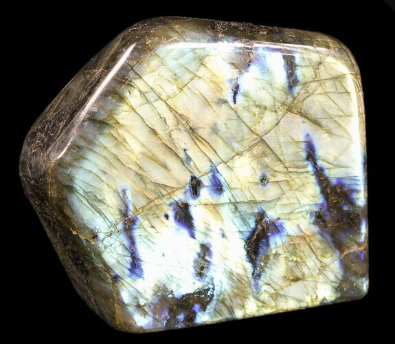 "3.6"" Flashy Polished Free Form Labradorite"