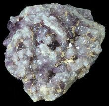 "Buy 1.9"" Purple Amethyst Cluster - Turkey - #55369"