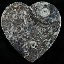 Heart Shaped Fossil Goniatite Dish For Sale, #4952