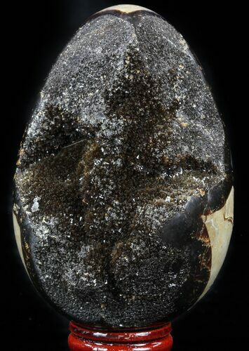 "4.2"" Septarian ""Dragon Egg"" Geode - Black Crystals"