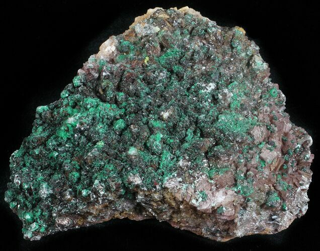 "3.6"" Malachite, Selenite and Ferroan Dolomite Association - Morocco"