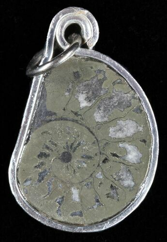 Pyrite Replaced Ammonite Fossil Pendant