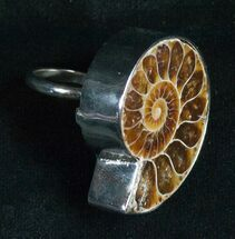 Ring Featuring Cut And Polished Ammonite Fossil For Sale, #5099