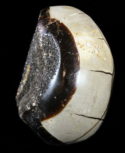 "2.3"" Septarian ""Dragon Egg"" Geode - Black Crystals"