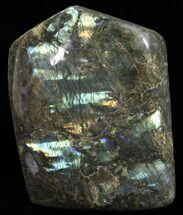 "Buy 10.7"" Tall, Flashy Polished Free Form Labradorite - 33 lbs - #59089"