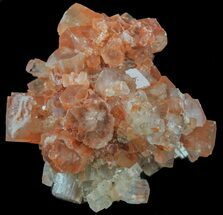 "1.8"" Aragonite Twinned Crystal Cluster - Morocco For Sale, #59786"