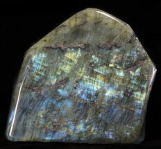 "7.6"" Tall, Flashy Polished Free Form Labradorite For Sale, #60074"
