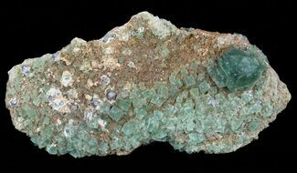 "4.5"" Fluorite & Galena Cluster -  Rogerley Mine For Sale, #60368"