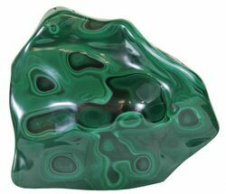 "4.8"" Polished Malachite - Congo For Sale, #60875"
