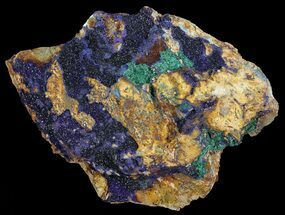 "7.3"" Large Malachite with Azurite Specimen - Morocco For Sale, #60989"