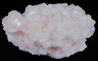 "3.7"" Pink Halite Crystal Plate - Trona, California For Sale, #61049"