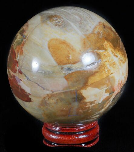 "2.4"" Colorful Petrified Wood Sphere - Oregon"