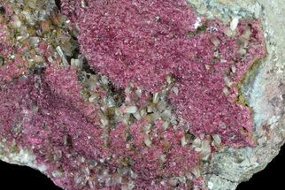 Roselite & Calcite - Fossils For Sale - #61191
