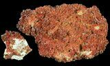 Ruby Red Vanadinite Crystals on Barite Wholesale Lot - 9 Pieces - #61632-1