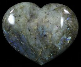 Labradorite - Fossils For Sale - #62481