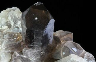 "Buy 7.2"" Smoky Quartz Cluster - Brazil  - #60766"