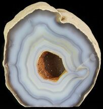 "2.9"" Polished Brazilian Agate Standup - Druzy Quartz For Sale, #61922"