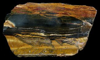 Tiger Eye - Fossils For Sale - #62775