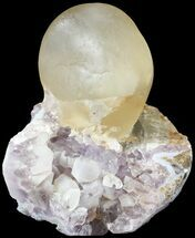 Buy Butterscotch Fluorite Ball on Amethyst - India - #63139