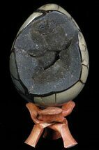 Septarian with Calcite  - Fossils For Sale - #60360
