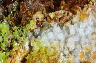 "Buy 2.6"" Pyromorphite Crystals on Quartz - China - #63700"