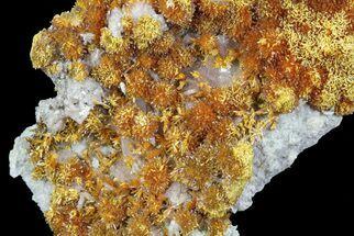 Barite, Pyrite & Orpiment - Fossils For Sale - #63801