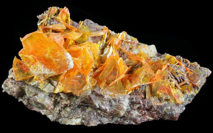 "2.8"" Bright Orange Wulfenite Cluster - Large Crystals"