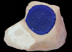 "1.2"" Brilliant Blue Azurite Sun On Rock - Australia For Sale, #64274"