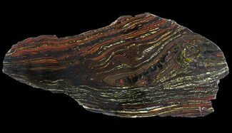 Tiger Iron Stromatolite - Fossils For Sale - #65244