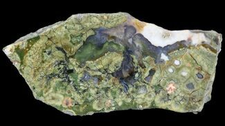 Rhyolite - Fossils For Sale - #65349