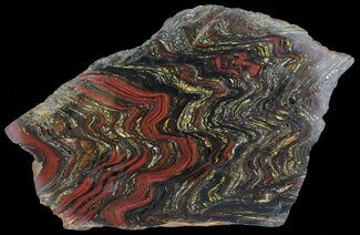 "Buy 12.2"" Polished Tiger Iron Stromatolite - (2.7 Billion Years) - #65356"