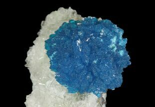 Vibrant Blue Cavansite Cluster on Stilbite - India For Sale, #64796