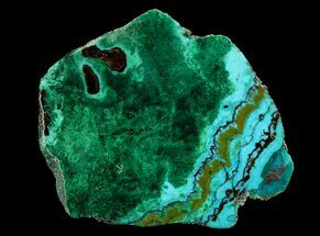 "1.8"" Polished Chrysocolla & Plume Malachite - Bagdad Mine, Arizona For Sale, #64901"