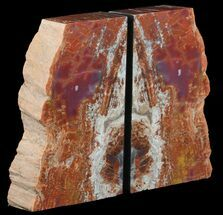 "8.4"" Tall, Colorful, Arizona Petrified Wood Bookends For Sale, #65963"