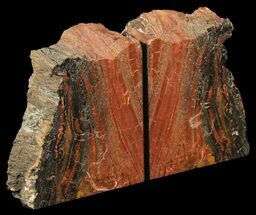 "6.1"" Tall, Colorful, Arizona Petrified Wood Bookends For Sale, #65966"