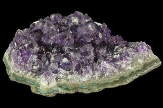 "3.7"" Purple Amethyst Cluster - Uruguay For Sale, #66722"
