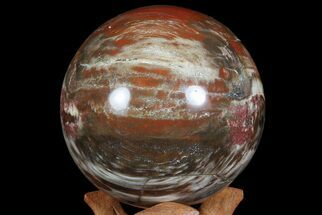 "Bargain, 3.9"" Colorful Petrified Wood Sphere - Madagascar For Sale, #67769"