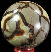 "2.7"" Polished Septarian Sphere - Madagascar For Sale, #67871"