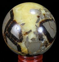 Septarian - Fossils For Sale - #67845
