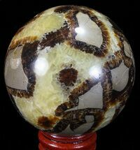 "Buy 2.45"" Polished Septarian Sphere - Madagascar - #67849"