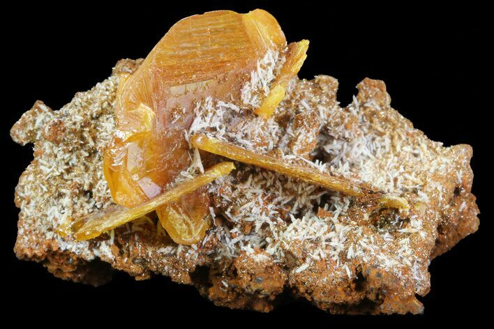 "1.4"" Wulfenite Crystals on Matrix - Mexico"