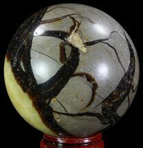 Septarian - Fossils For Sale - #67839