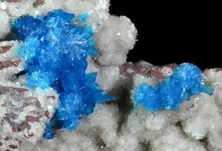 Cavansite on Stilbite - Fossils For Sale - #67794