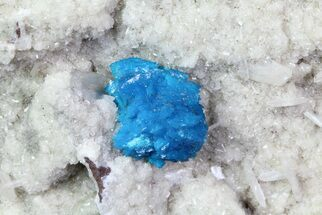 Cavansite on Stilbite - Fossils For Sale - #67806