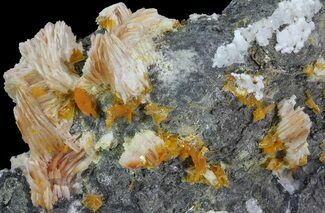 Barite, Cerussite, Galena & Wulfenite - Fossils For Sale - #68226