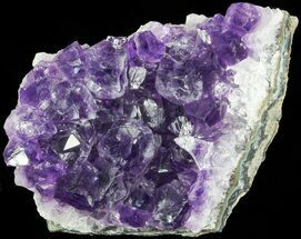 "Buy 2.2"" Purple Amethyst Cluster - Uruguay - #66796"