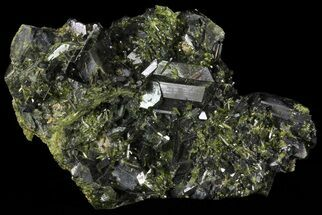 "Lustrous 3.3"" Epidote Crystal Cluster - Pakistan For Sale, #68249"